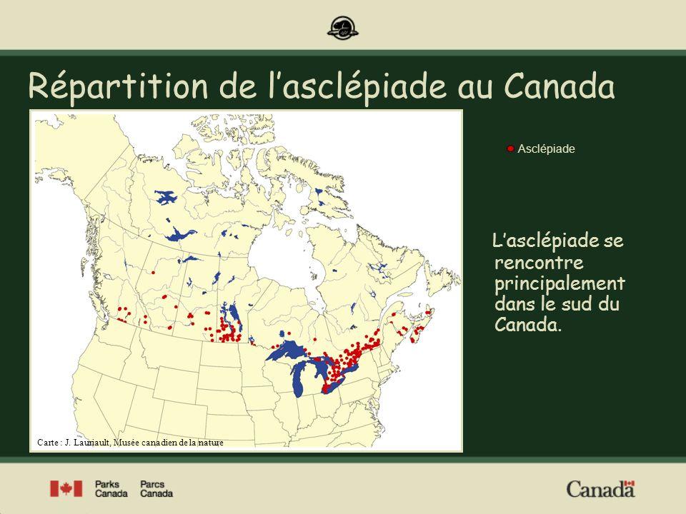 Répartition de l'asclépiade au Canada