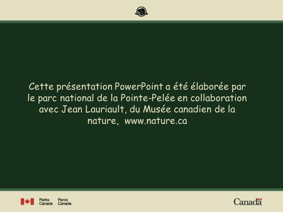 Cette présentation PowerPoint a été élaborée par le parc national de la Pointe-Pelée en collaboration avec Jean Lauriault, du Musée canadien de la nature, www.nature.ca