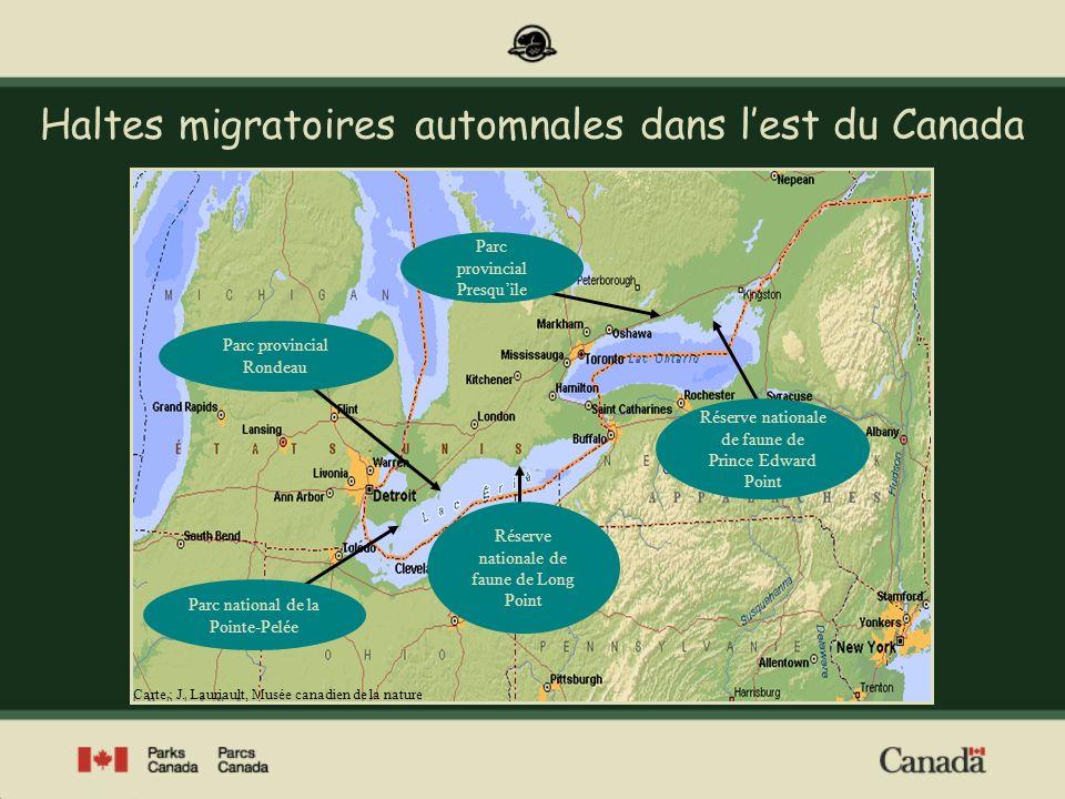 Haltes migratoires automnales dans l'est du Canada