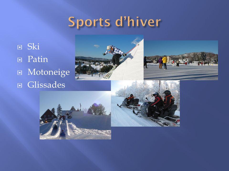 Sports d'hiver Ski Patin Motoneige Glissades
