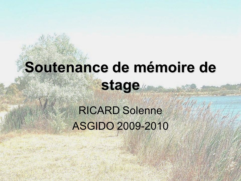 Soutenance de mémoire de stage