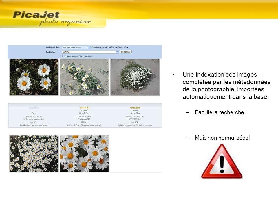 Une indexation des images complétée par les métadonnées de la photographie, importées automatiquement dans la base