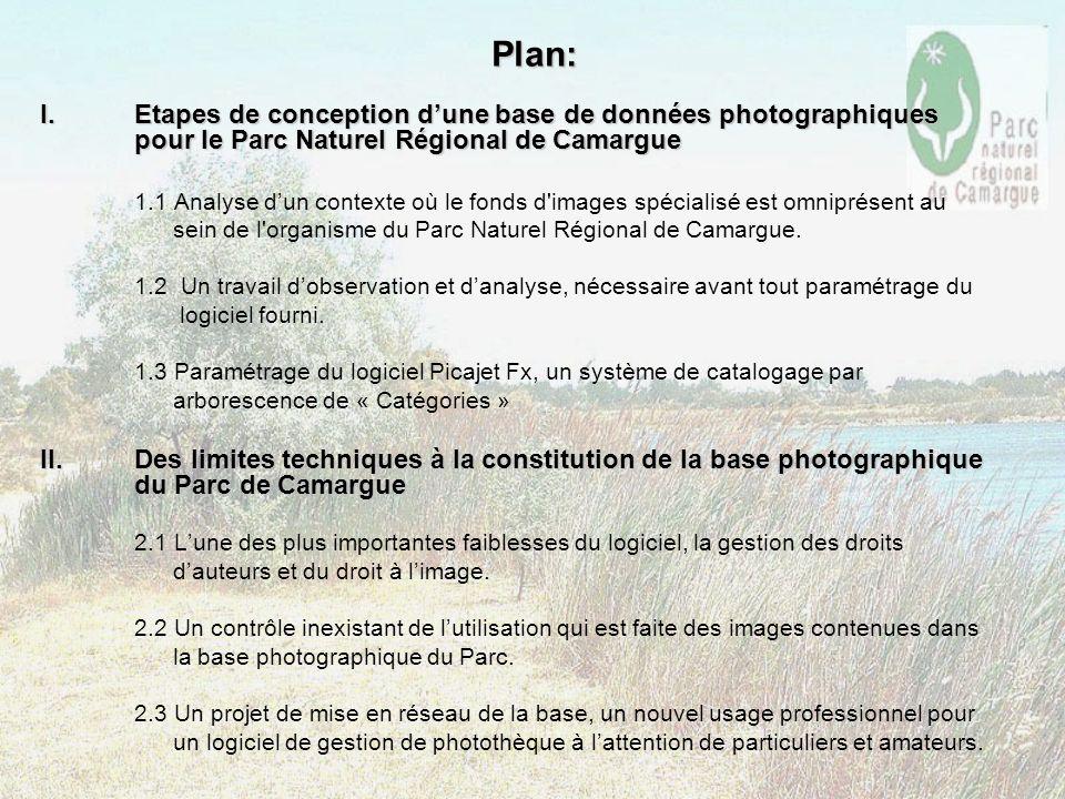 Plan: Etapes de conception d'une base de données photographiques pour le Parc Naturel Régional de Camargue.