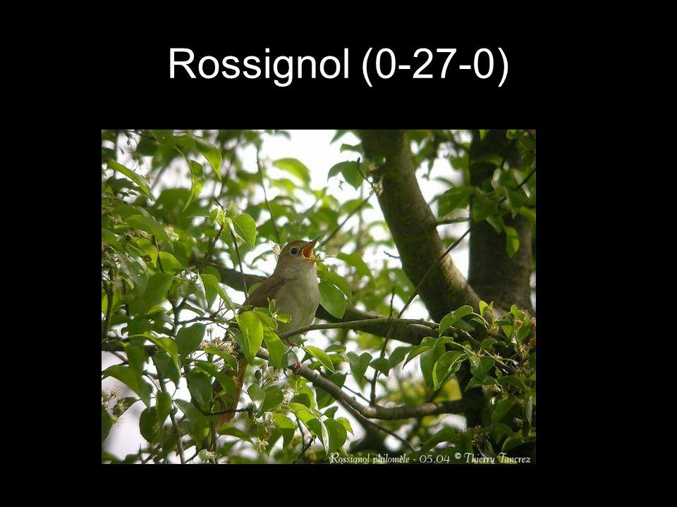 Rossignol (0-27-0)
