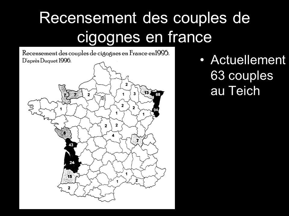 Recensement des couples de cigognes en france