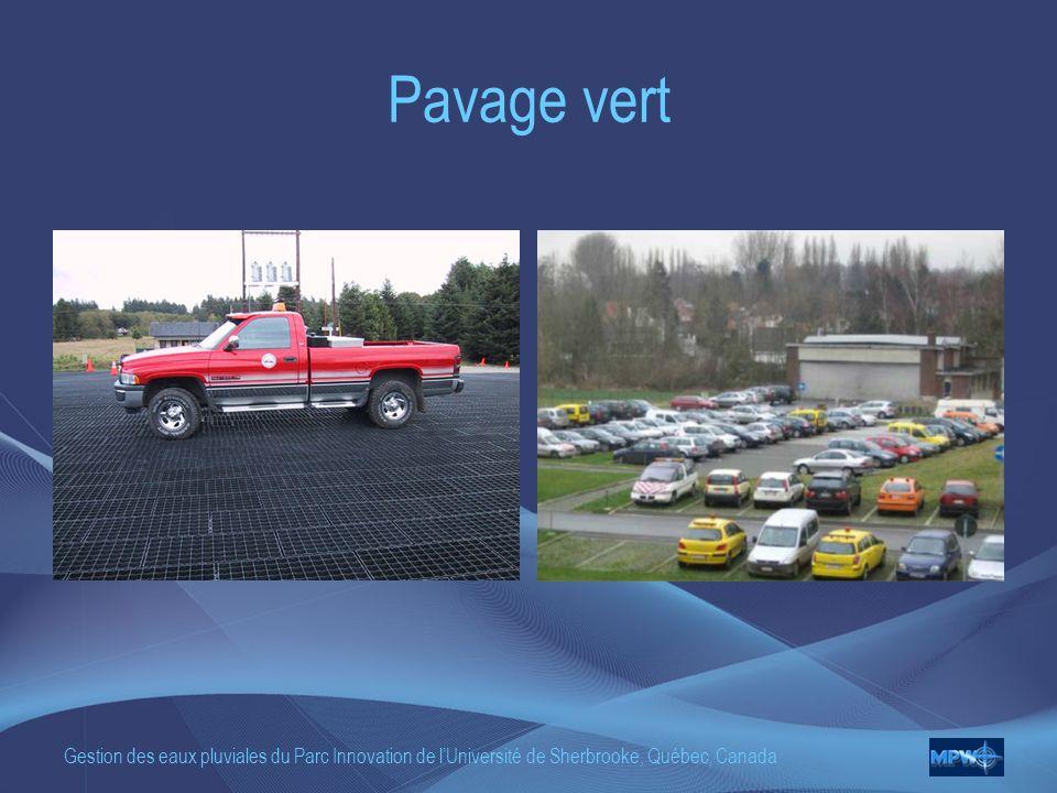 Pavage vert Gestion des eaux pluviales du Parc Innovation de l'Université de Sherbrooke, Québec, Canada.