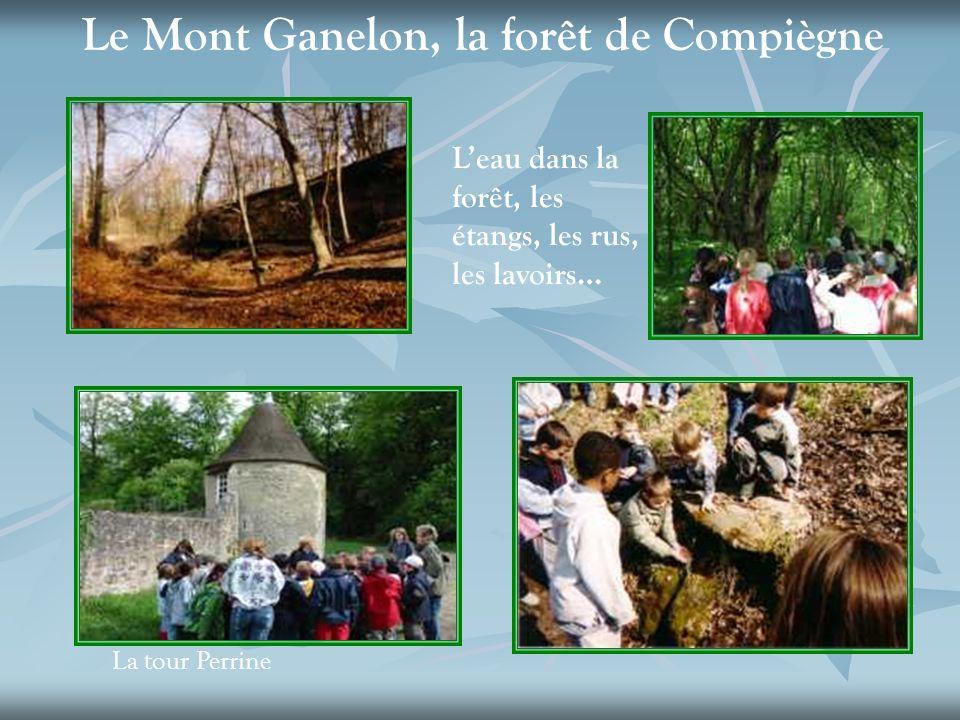 Le Mont Ganelon, la forêt de Compiègne