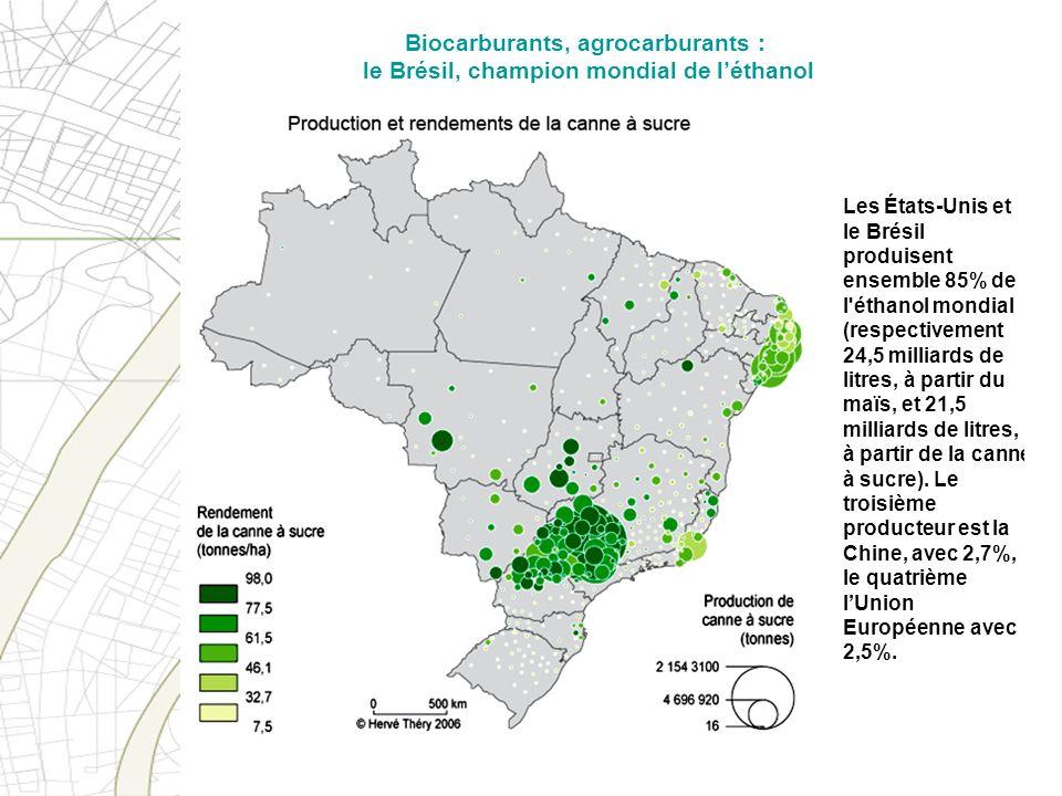 Biocarburants, agrocarburants : le Brésil, champion mondial de l'éthanol