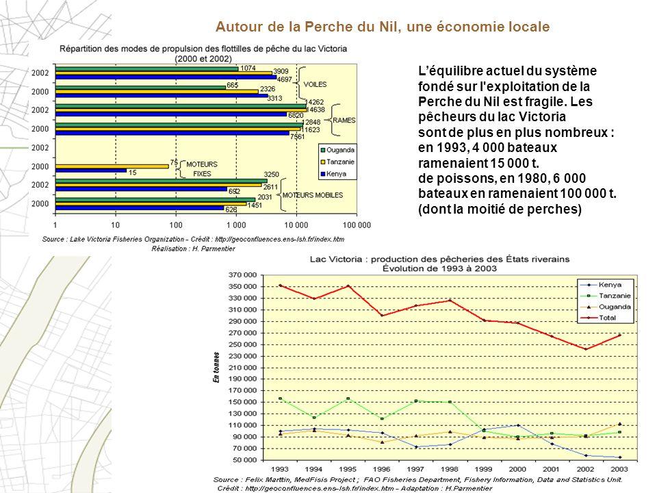 Autour de la Perche du Nil, une économie locale