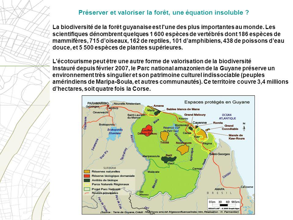 Préserver et valoriser la forêt, une équation insoluble
