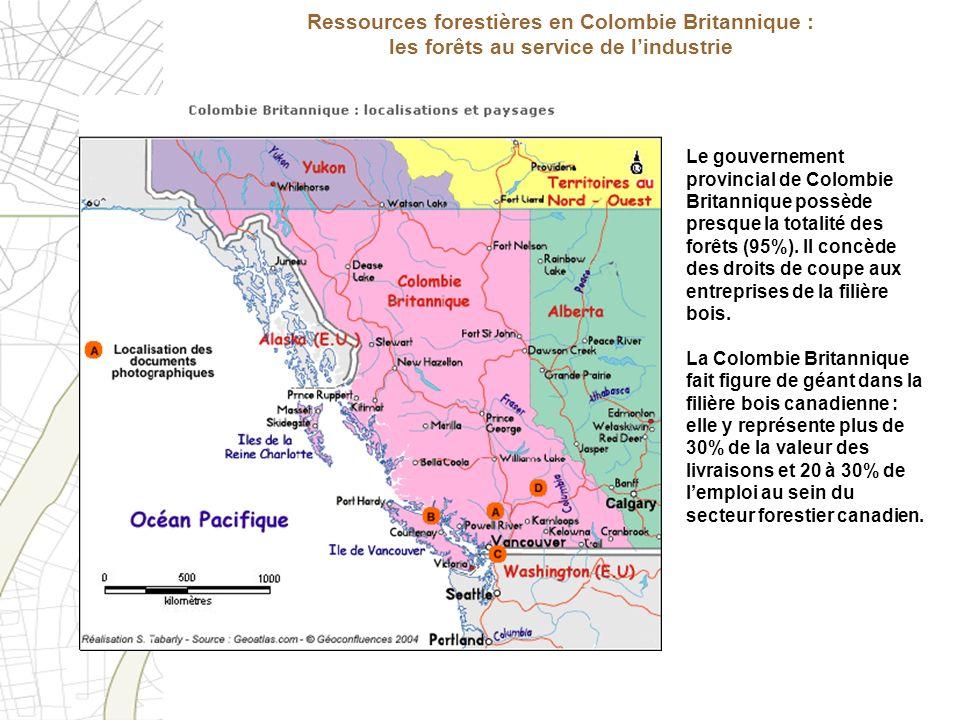 Ressources forestières en Colombie Britannique : les forêts au service de l'industrie