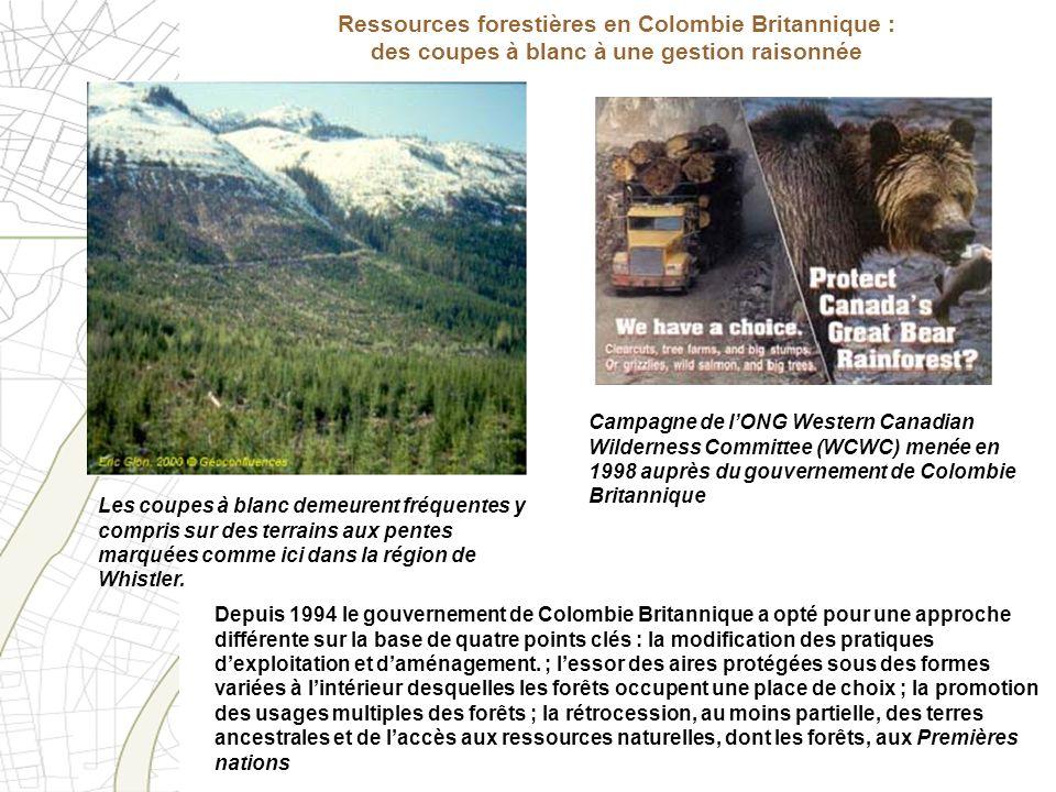 Ressources forestières en Colombie Britannique : des coupes à blanc à une gestion raisonnée