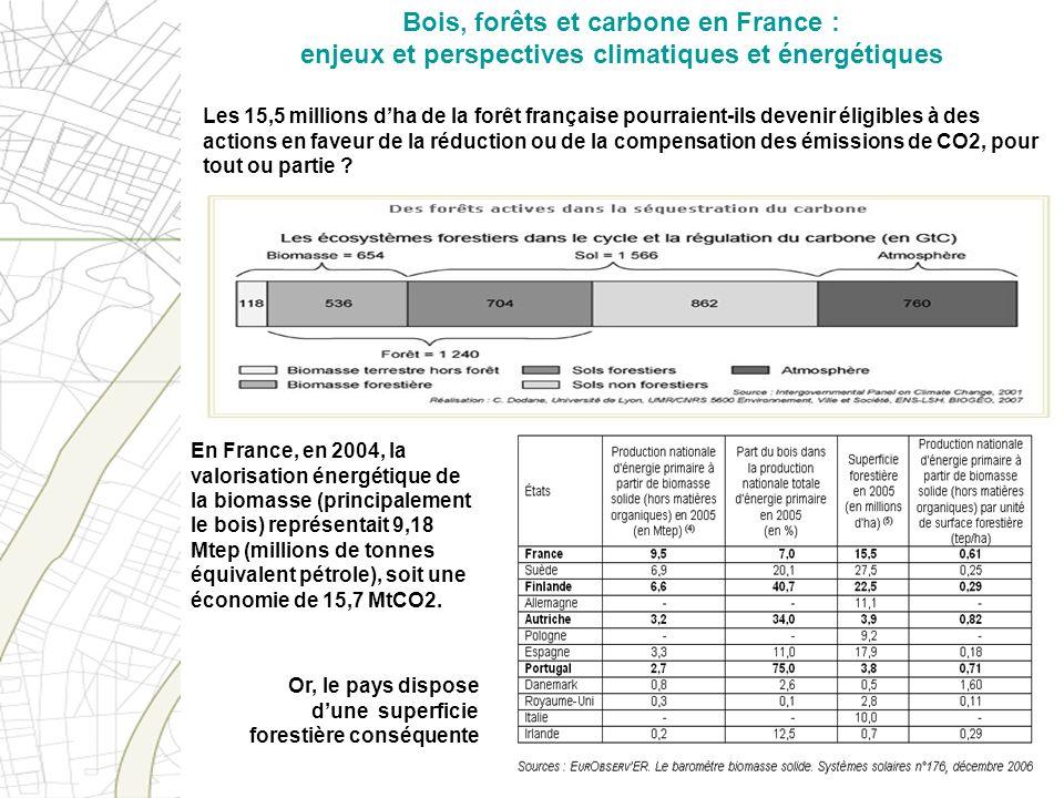 Bois, forêts et carbone en France : enjeux et perspectives climatiques et énergétiques