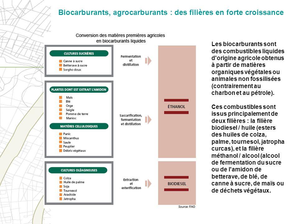 Biocarburants, agrocarburants : des filières en forte croissance