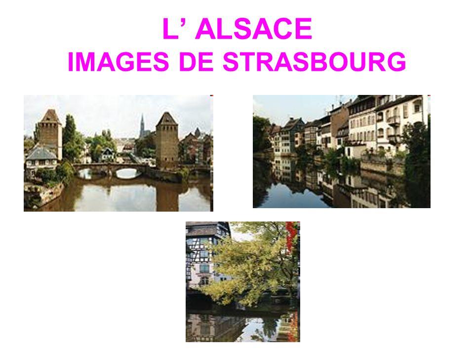 L' ALSACE IMAGES DE STRASBOURG