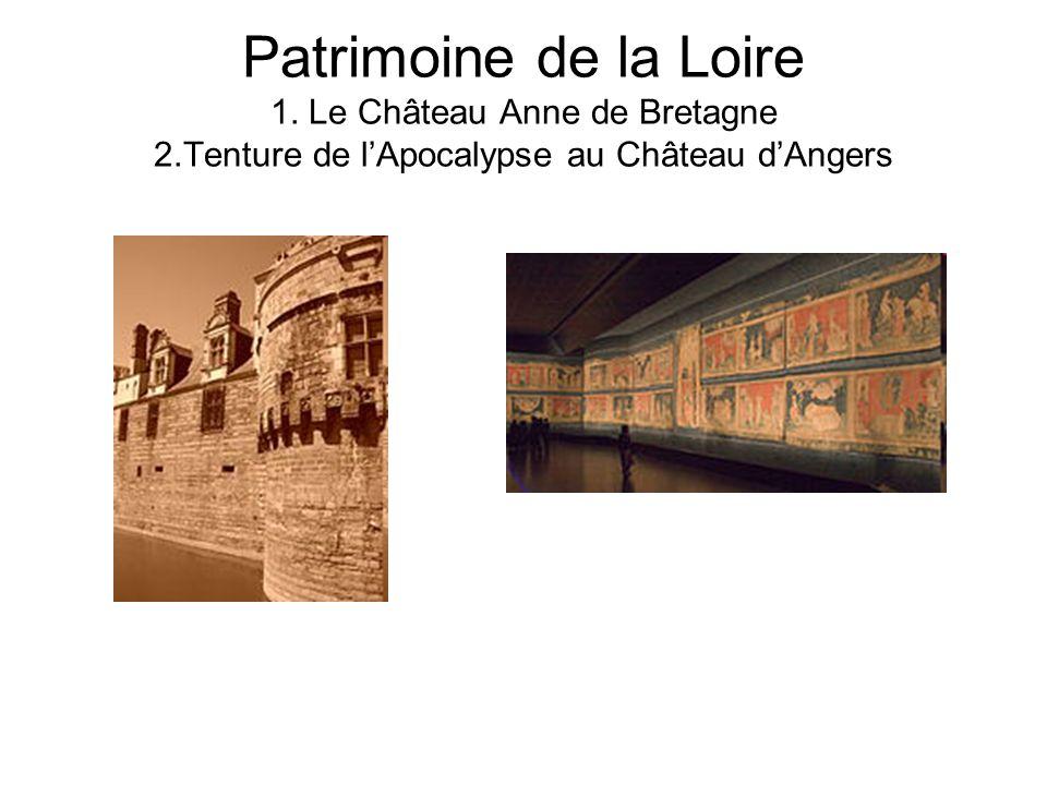 Patrimoine de la Loire 1. Le Château Anne de Bretagne 2