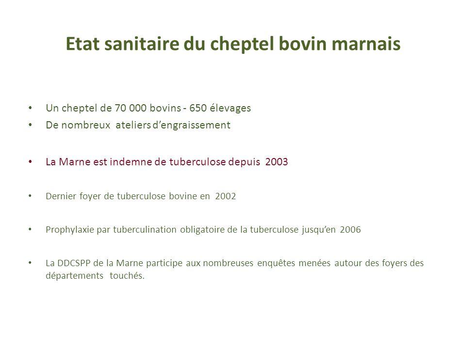 Etat sanitaire du cheptel bovin marnais