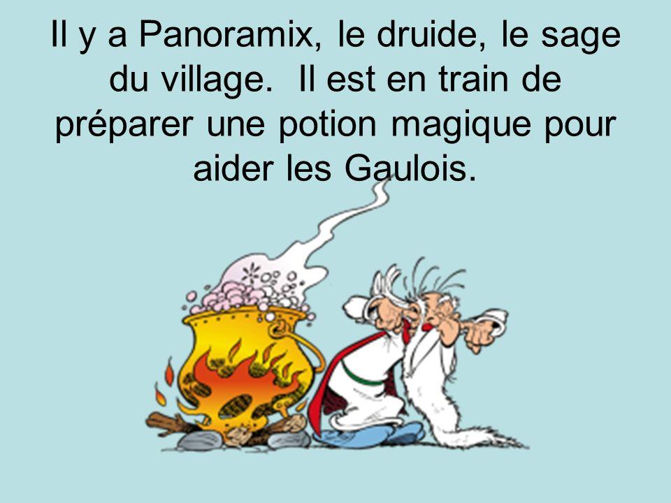 Il y a Panoramix, le druide, le sage du village