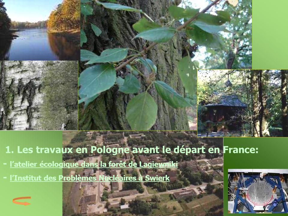 - l'atelier écologique dans la forêt de Lagiewniki