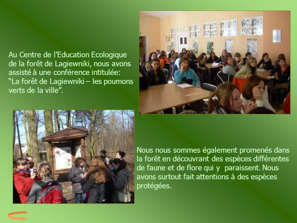 Au Centre de l'Education Ecologique de la forêt de Lagiewniki, nous avons assisté à une conférence intitulée: La forêt de Lagiewniki – les poumons verts de la ville .
