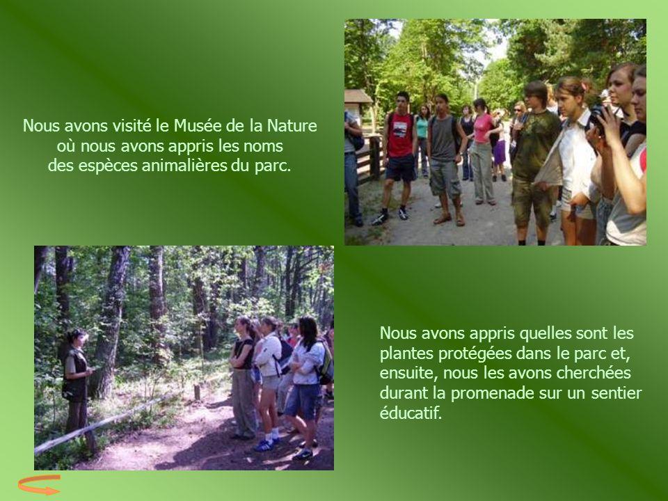 Nous avons visité le Musée de la Nature où nous avons appris les noms des espèces animalières du parc.