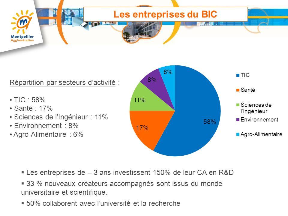 Les entreprises du BIC Répartition par secteurs d'activité : TIC : 58%