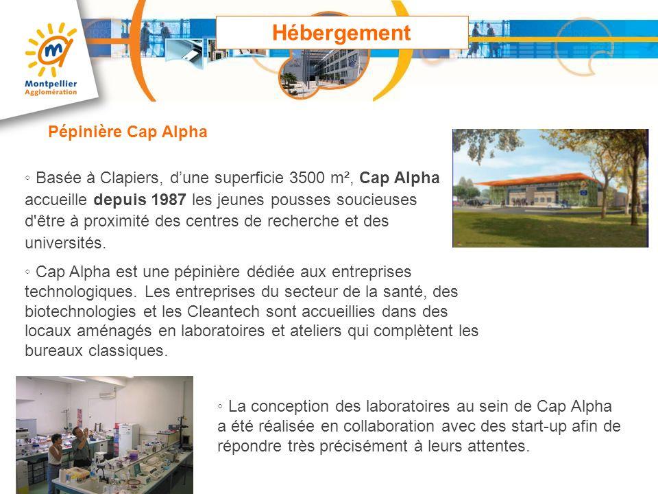 Hébergement Pépinière Cap Alpha