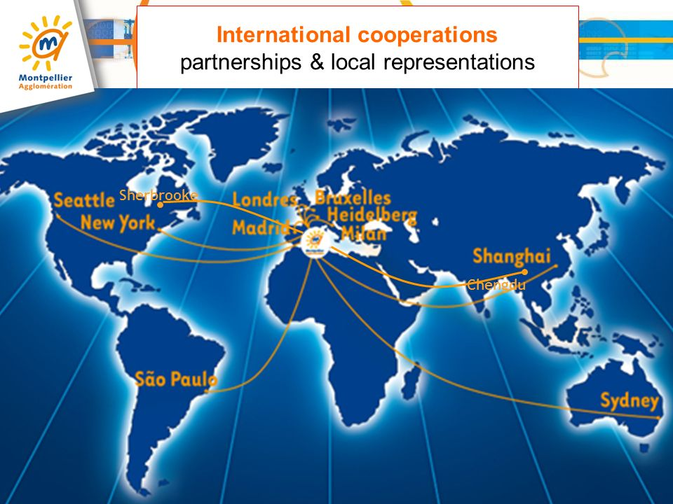 International cooperations partnerships & local representations