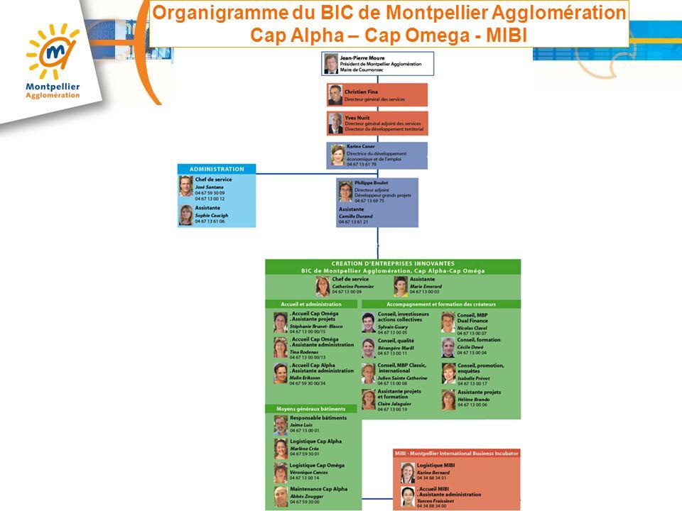 Bic de montpellier agglom ration cap alpha cap omega for Organigramme online