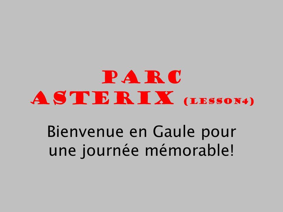 Bienvenue en Gaule pour une journée mémorable!