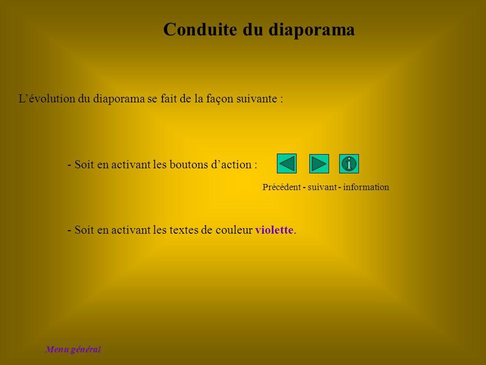 Conduite du diaporama L'évolution du diaporama se fait de la façon suivante : - Soit en activant les boutons d'action :