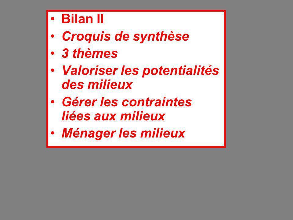 Bilan II Croquis de synthèse. 3 thèmes. Valoriser les potentialités des milieux. Gérer les contraintes liées aux milieux.