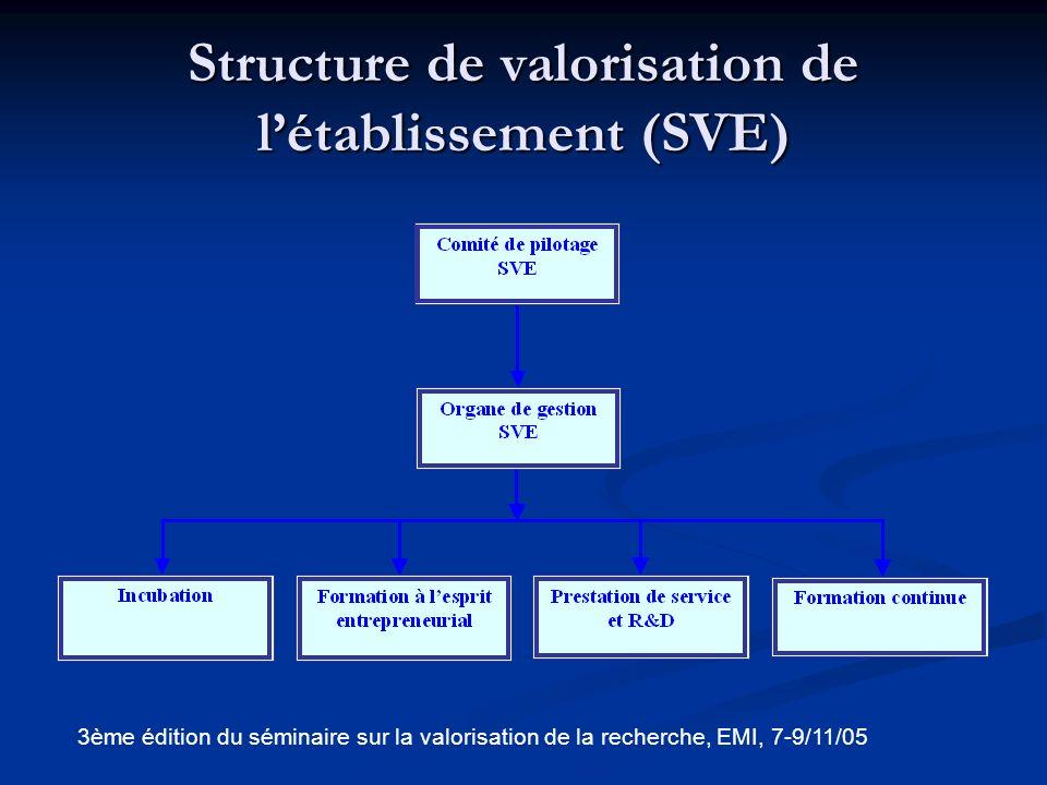 Structure de valorisation de l'établissement (SVE)