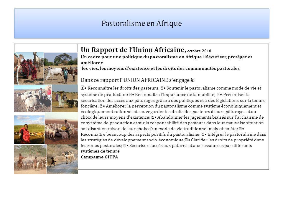Pastoralisme en Afrique