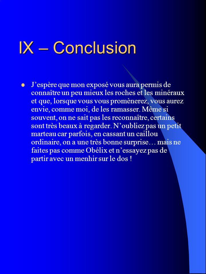 IX – Conclusion
