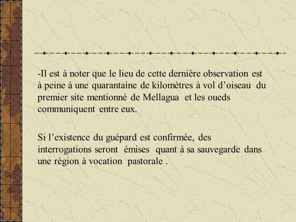 -Il est à noter que le lieu de cette dernière observation est à peine à une quarantaine de kilomètres à vol d'oiseau du premier site mentionné de Mellagua et les oueds communiquent entre eux.