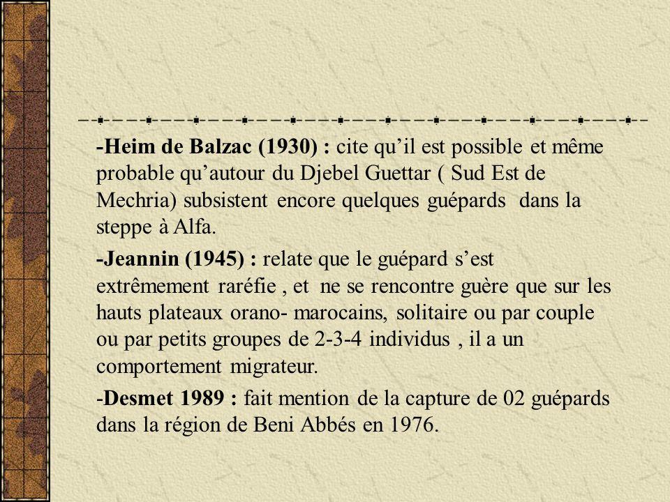 -Heim de Balzac (1930) : cite qu'il est possible et même probable qu'autour du Djebel Guettar ( Sud Est de Mechria) subsistent encore quelques guépards dans la steppe à Alfa.
