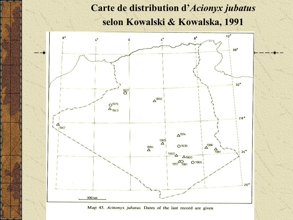 Carte de distribution d'Acionyx jubatus