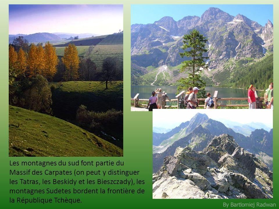 Les montagnes du sud font partie du Massif des Carpates (on peut y distinguer les Tatras, les Beskidy et les Bieszczady), les montagnes Sudetes bordent la frontière de la République Tchèque.