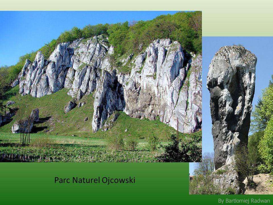 Parc Naturel Ojcowski