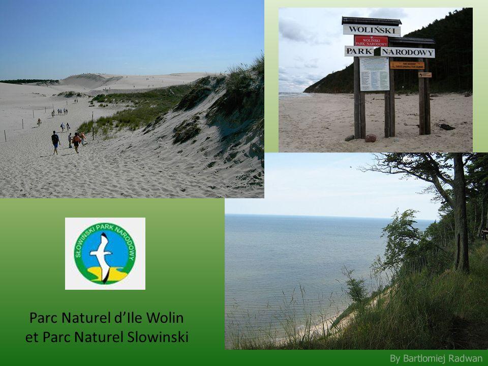 Parc Naturel d'Ile Wolin et Parc Naturel Slowinski