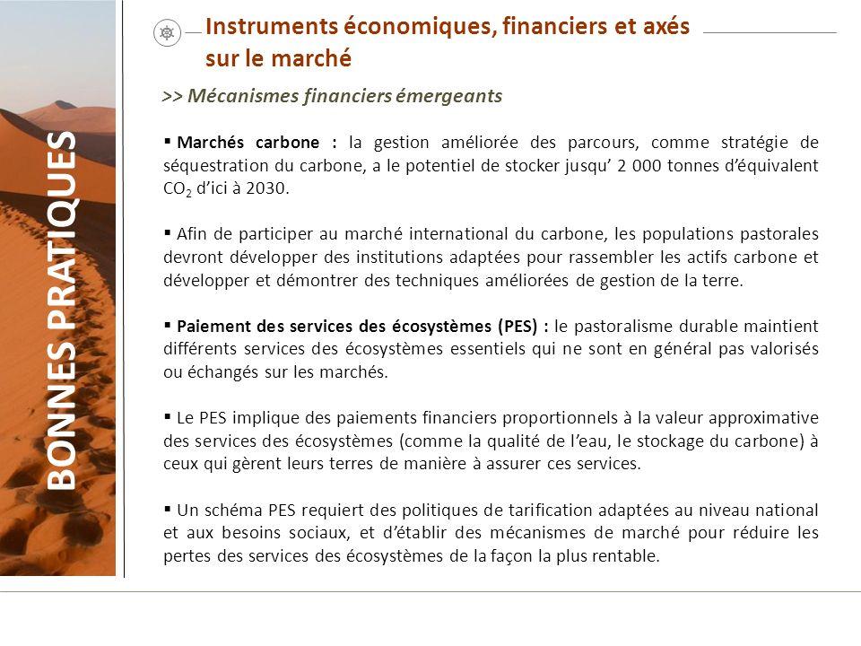 Instruments économiques, financiers et axés sur le marché