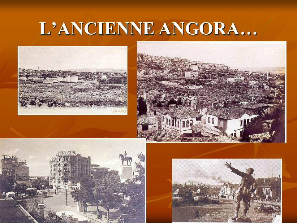 L'ANCIENNE ANGORA…