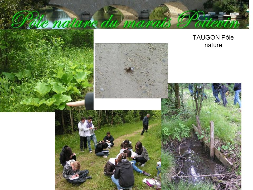 TAUGON Pôle nature