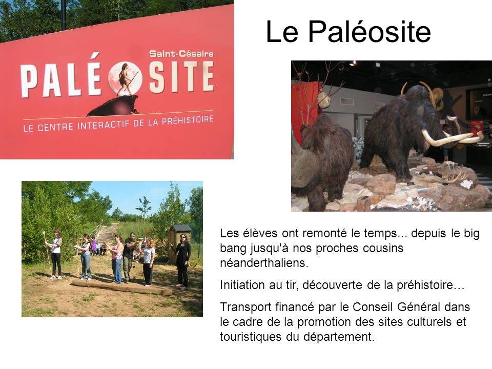 Le Paléosite Les élèves ont remonté le temps... depuis le big bang jusqu à nos proches cousins néanderthaliens.