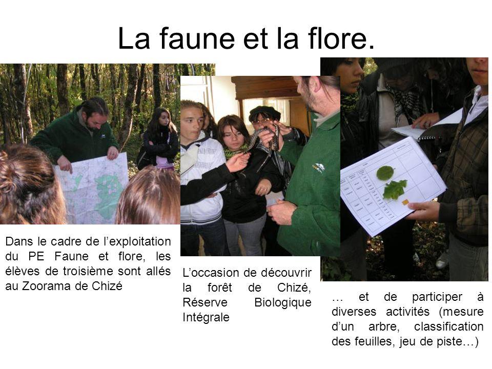 La faune et la flore. Dans le cadre de l'exploitation du PE Faune et flore, les élèves de troisième sont allés au Zoorama de Chizé.