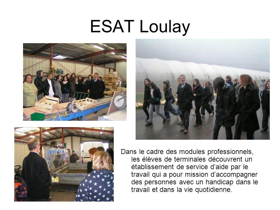 ESAT Loulay