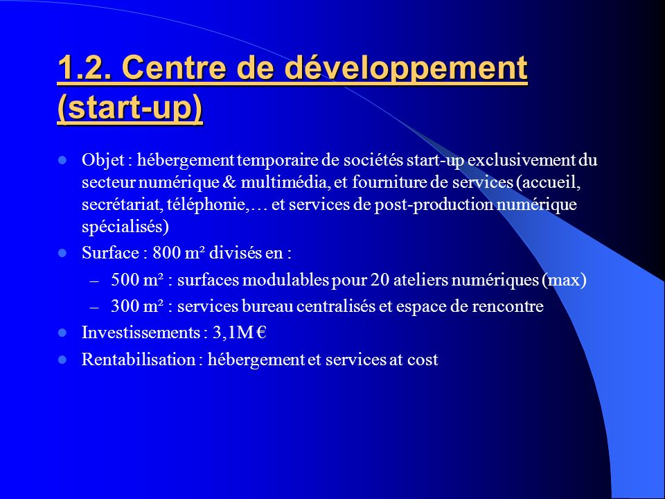1.2. Centre de développement (start-up)