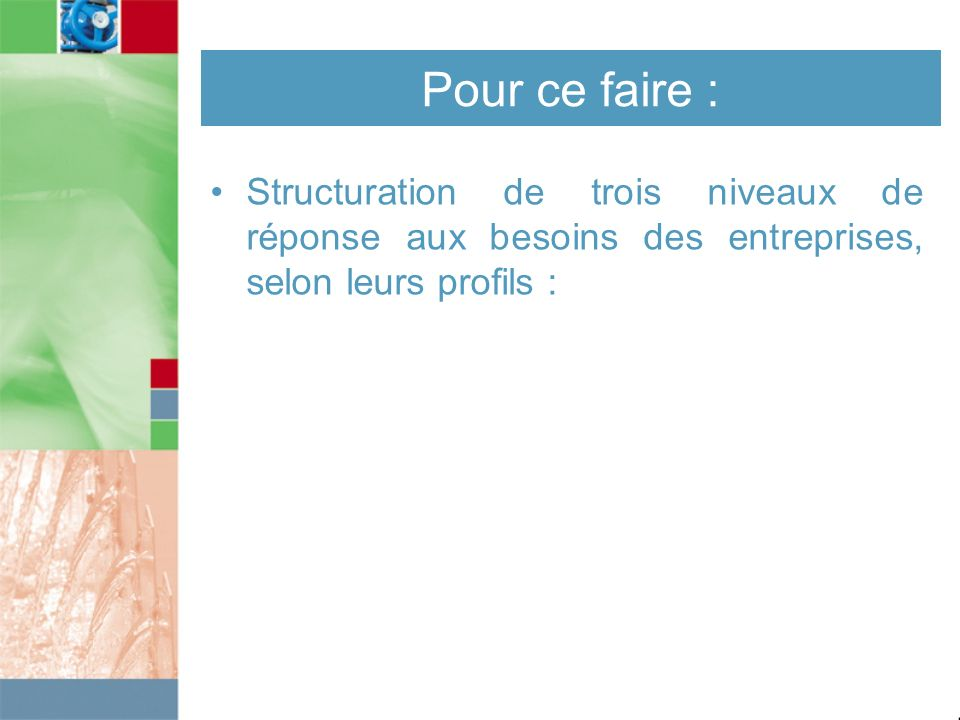 Pour ce faire : Structuration de trois niveaux de réponse aux besoins des entreprises, selon leurs profils :