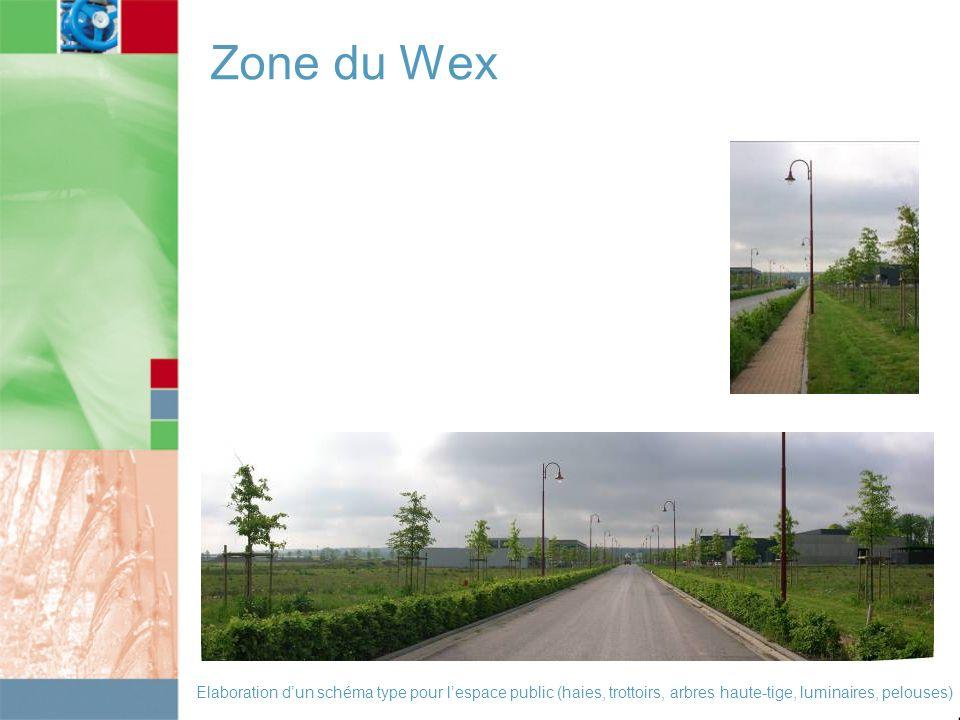 Zone du Wex Elaboration d'un schéma type pour l'espace public (haies, trottoirs, arbres haute-tige, luminaires, pelouses)